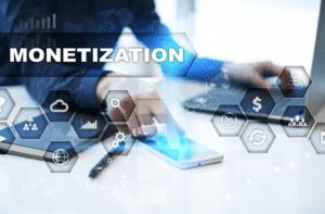 Website monetization process
